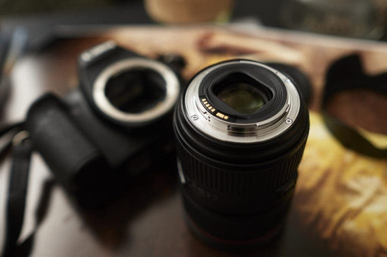 The Best Budget Lenses For Canon Photographers