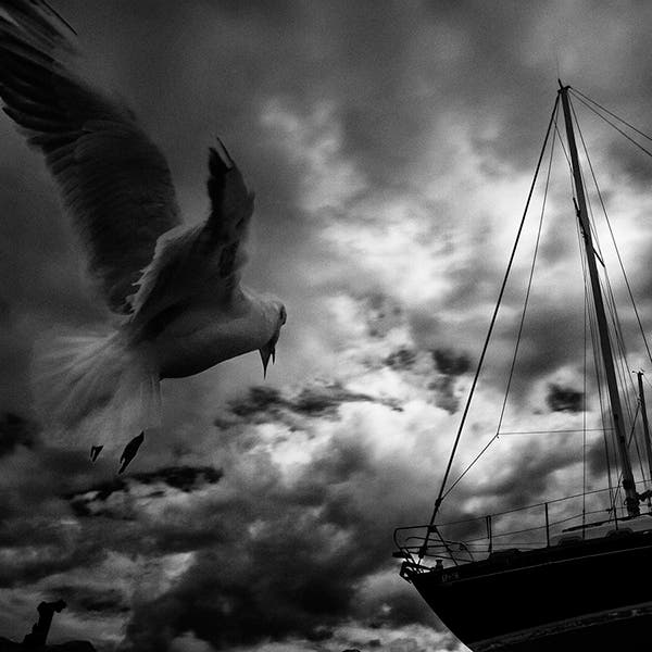 Vassilis Tangoulis Borrows the Mysterious Mood of Film Noir for his Landscapes