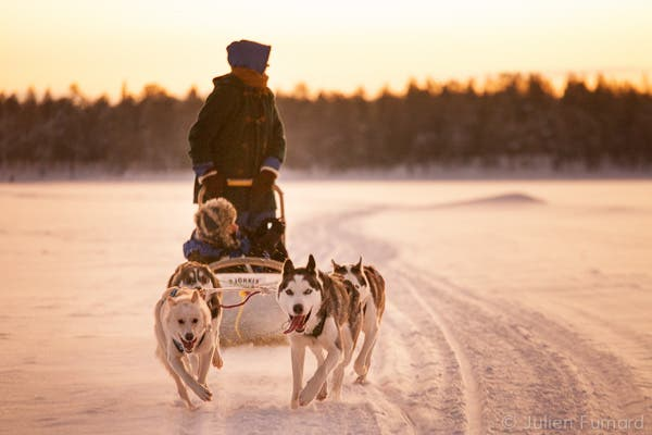 Julien Fumard Documents Life with Sled Dogs in Northern Finland
