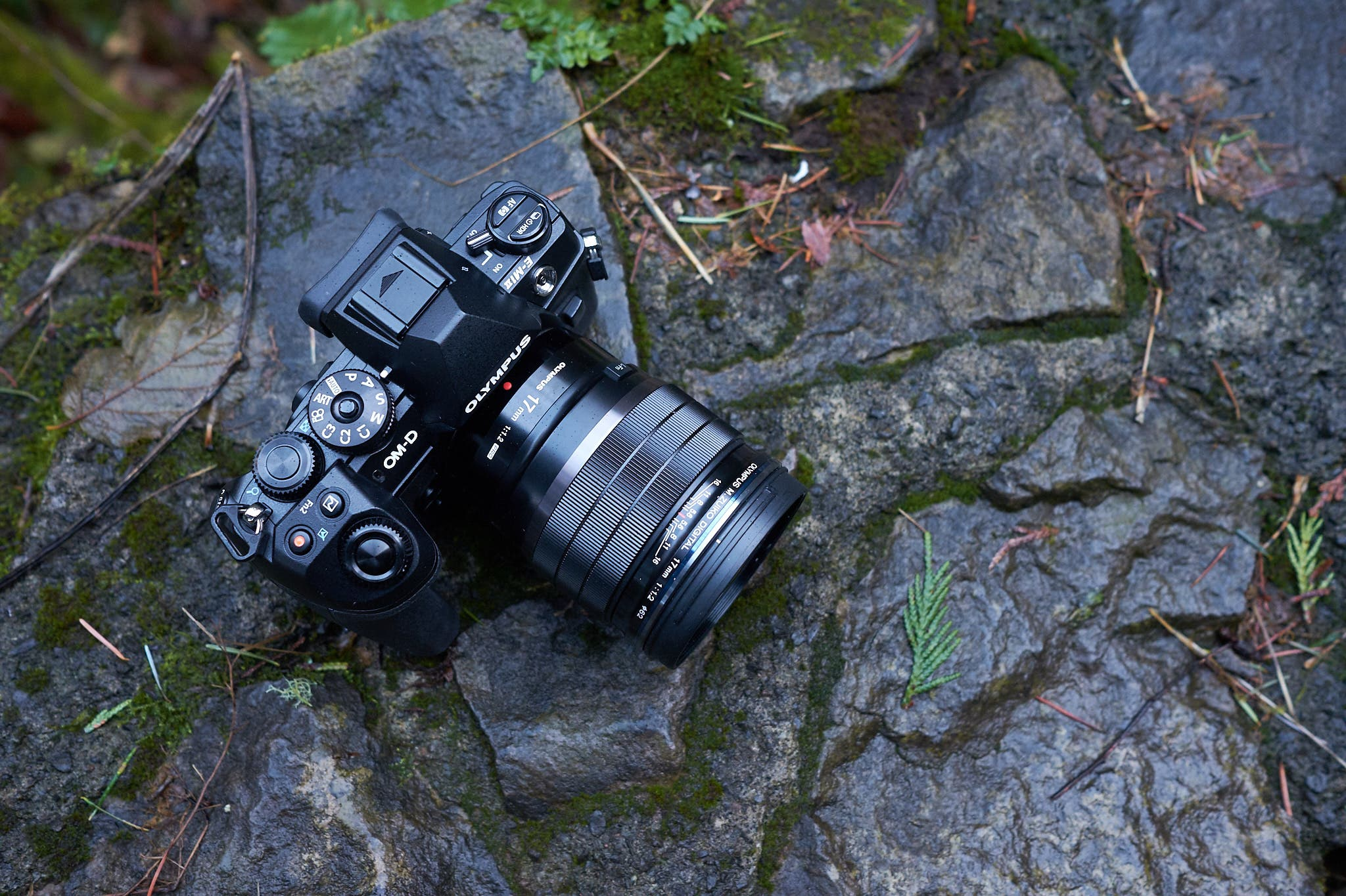 Some of Our Favorite Olympus Lenses Have Great Rebates