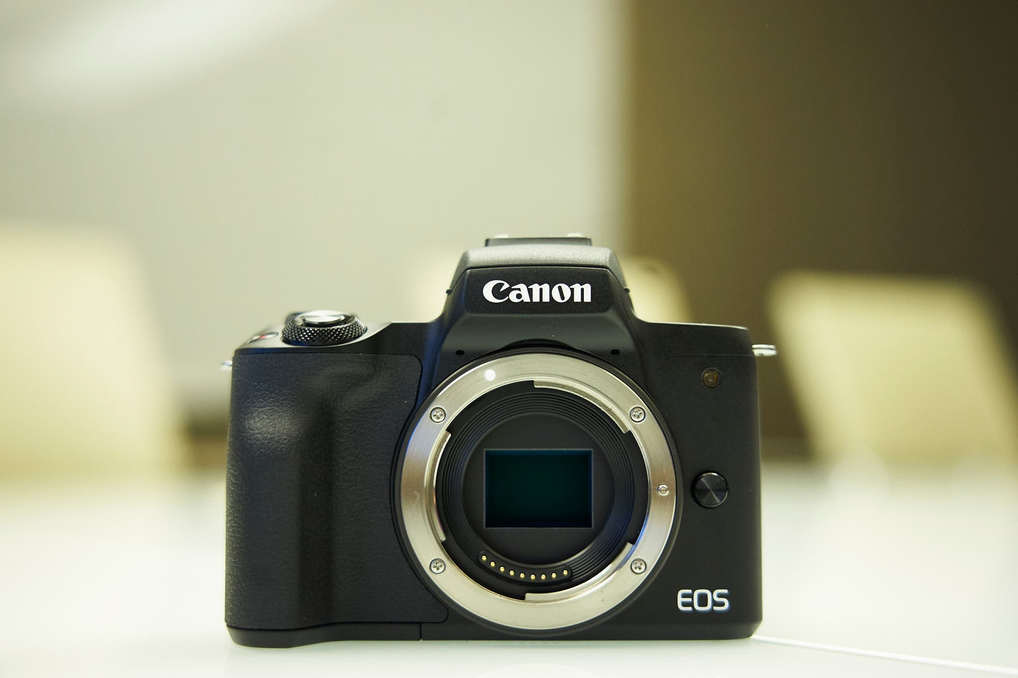 Review: Canon EOS M50 (Not Bad, But Not Fantastic)