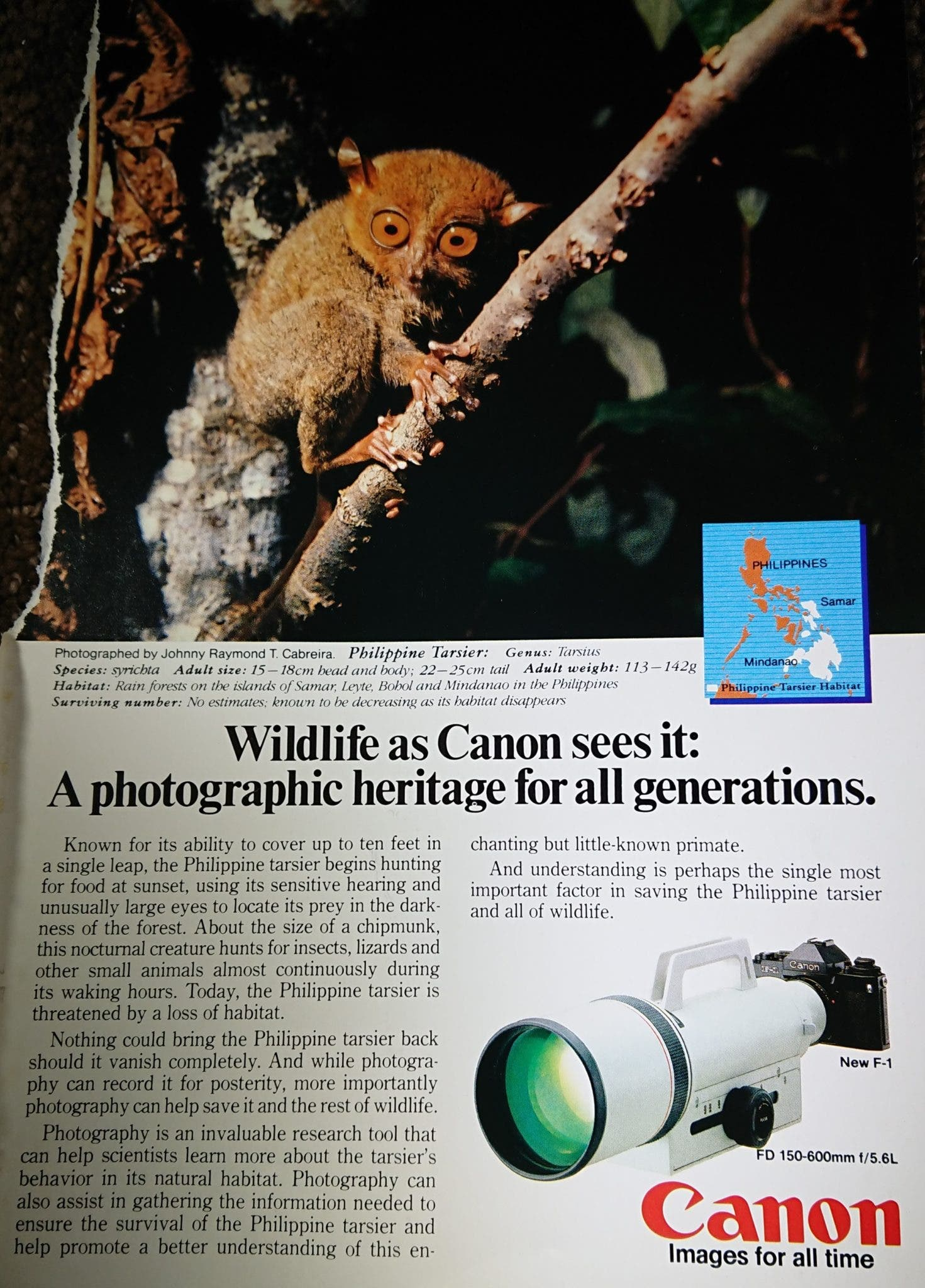 80's Canon Ad Emphasizes Photography's Role in Wildlife Conservation