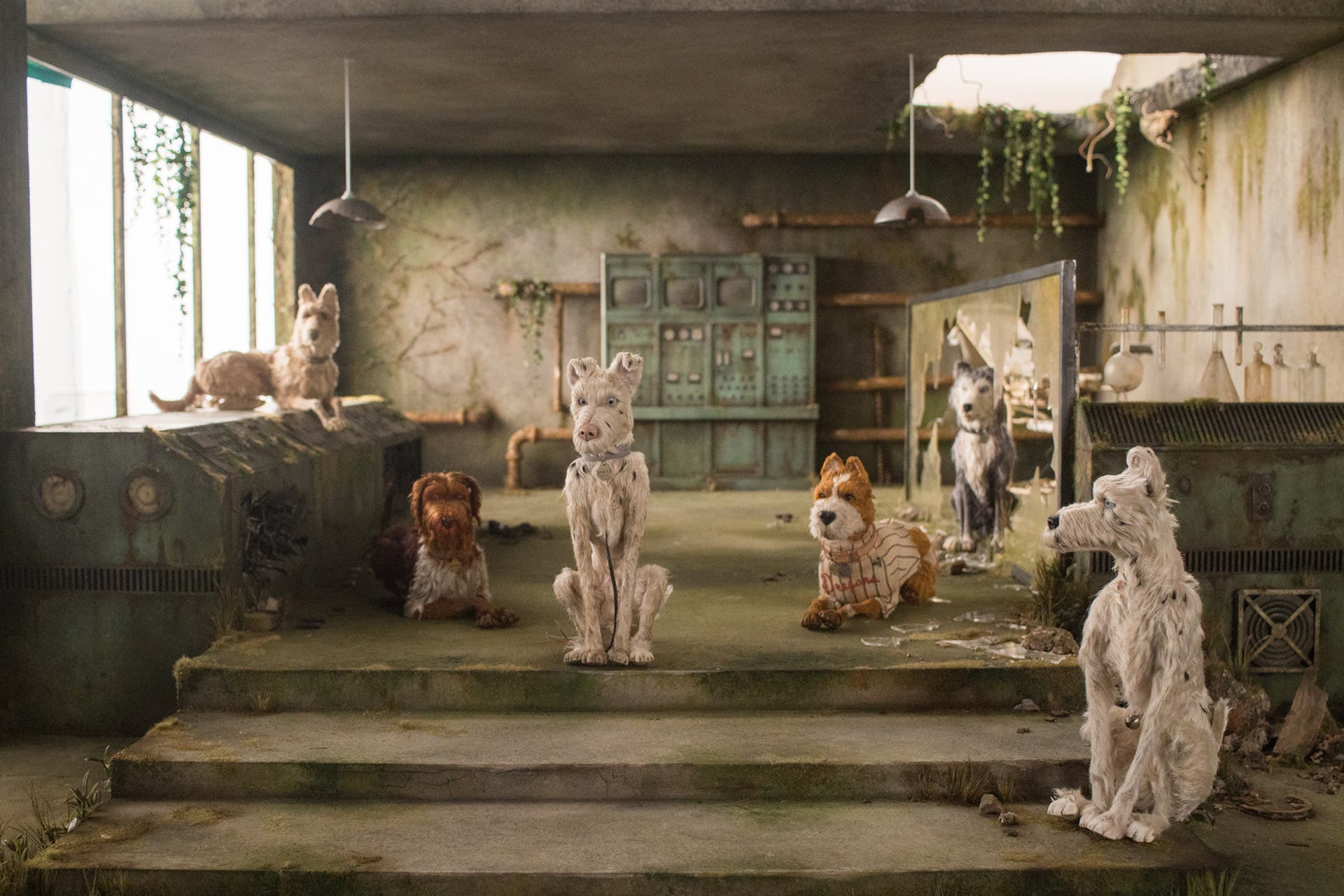 "These BTS Photos Show How Wes Anderson's ""Isle of Dogs"" Was Made"