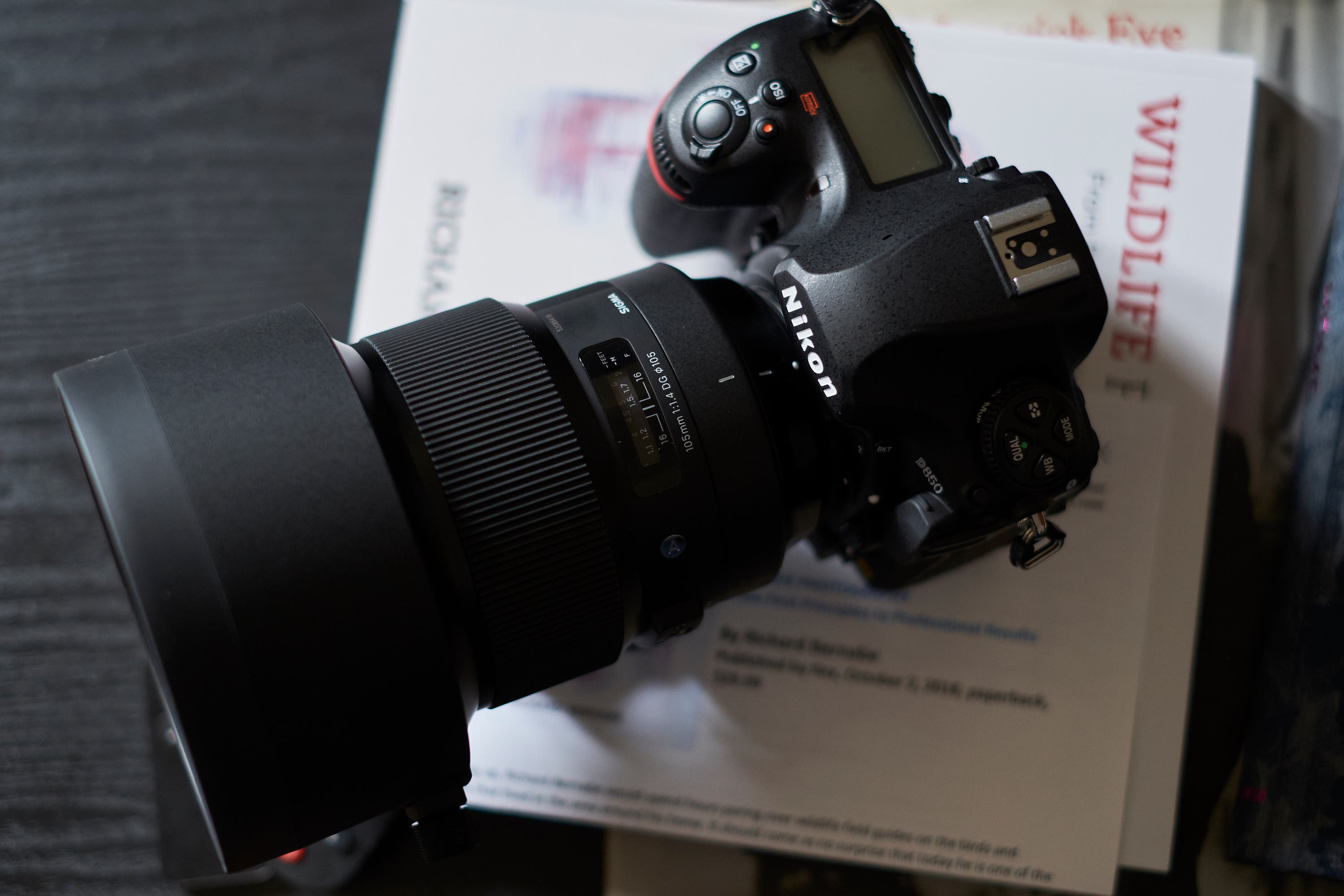 Cheap Photo: Sigma Savings Return Just in Time for the Holidays!