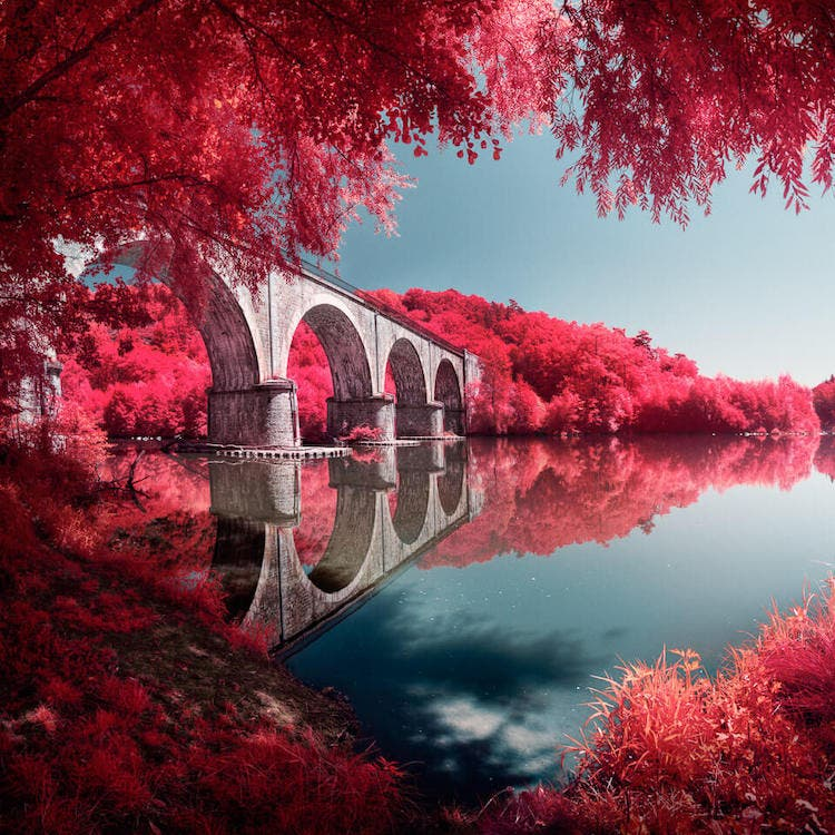 Create Infrared Images with a Filter That Mimics Kodak Aerochrome Film