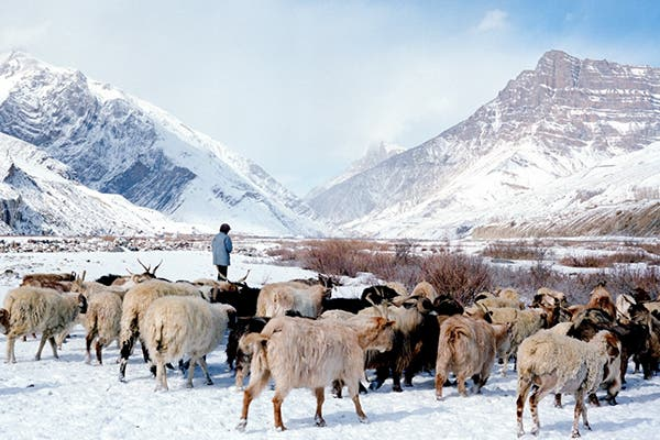 Himalayan Winter: Frigid Frames on Film by Nandakumar Narasimhan