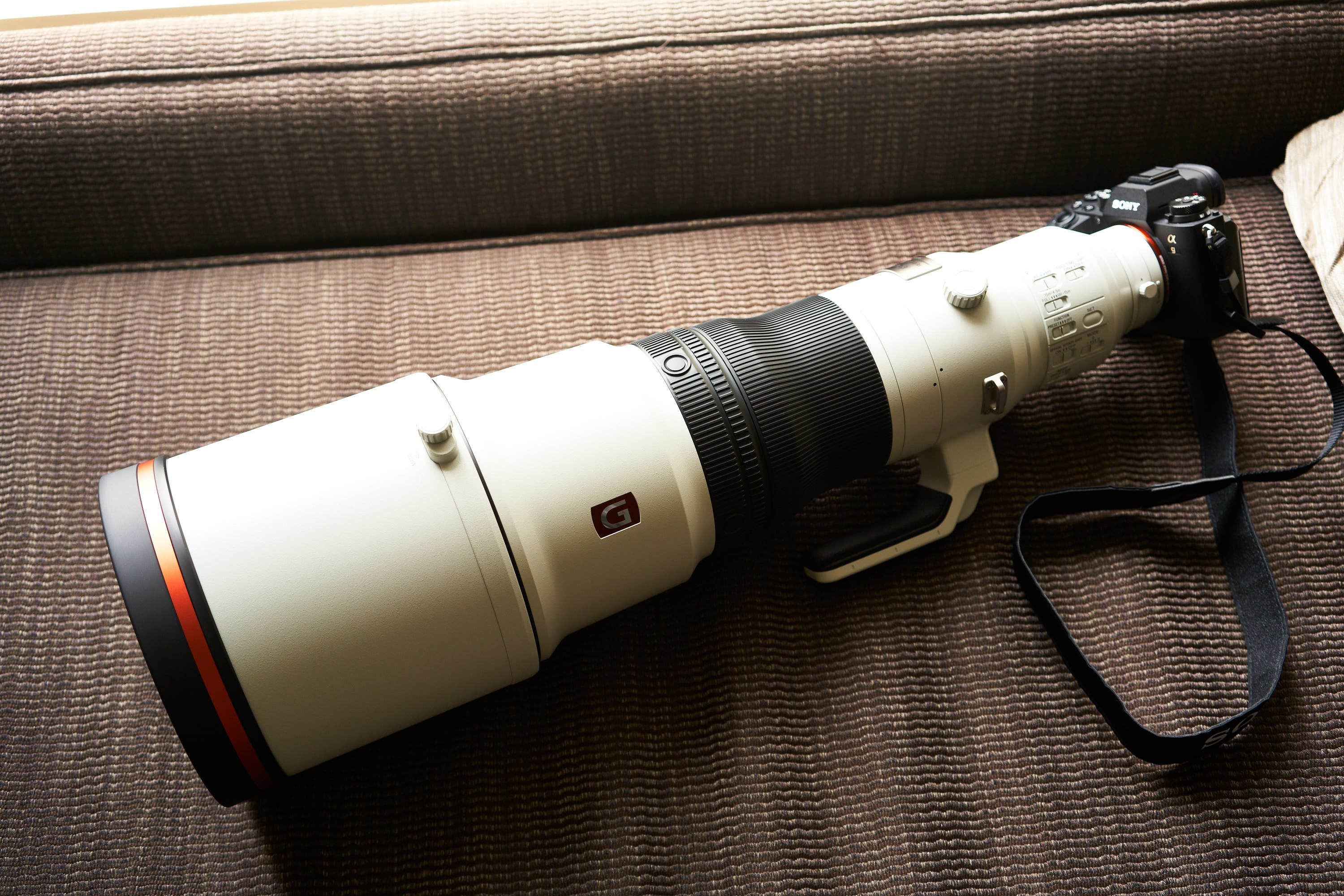 Review: Sony 600mm F4 G Master OSS (A Bird Photographer's Dream)