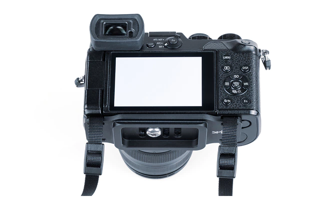 camera carrying system