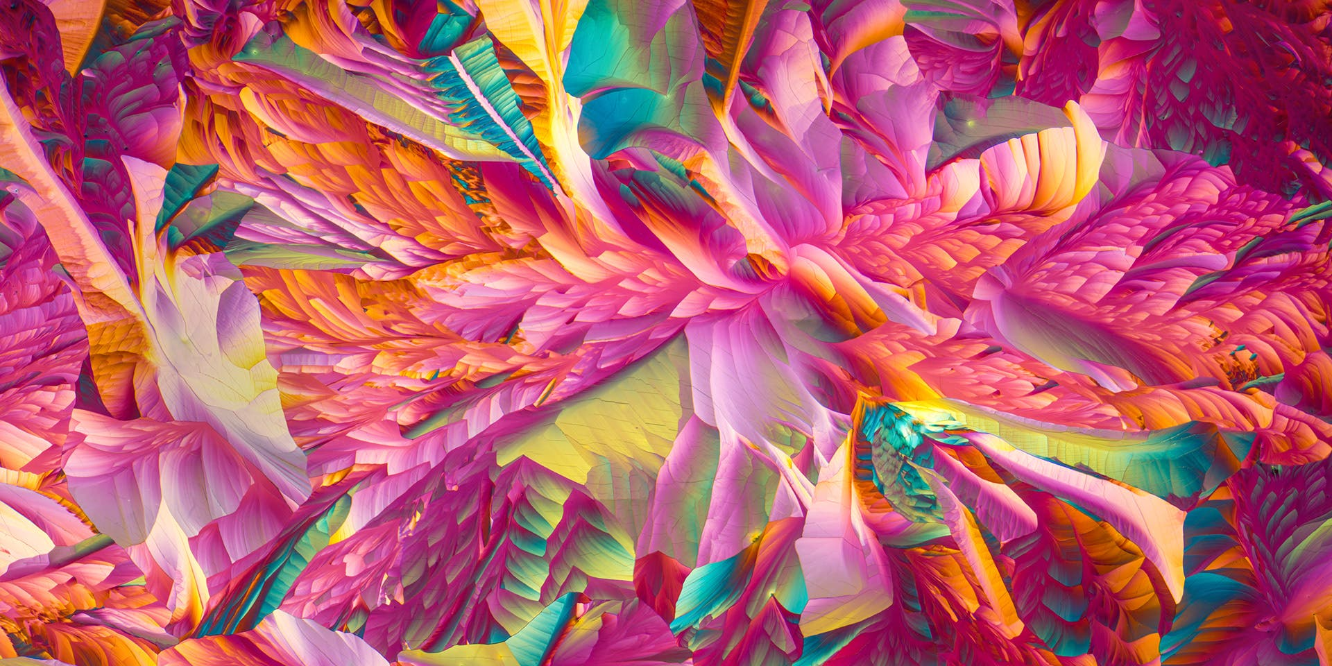Justin Zoll Photographed the Beauty of Crystallized Amino Acids