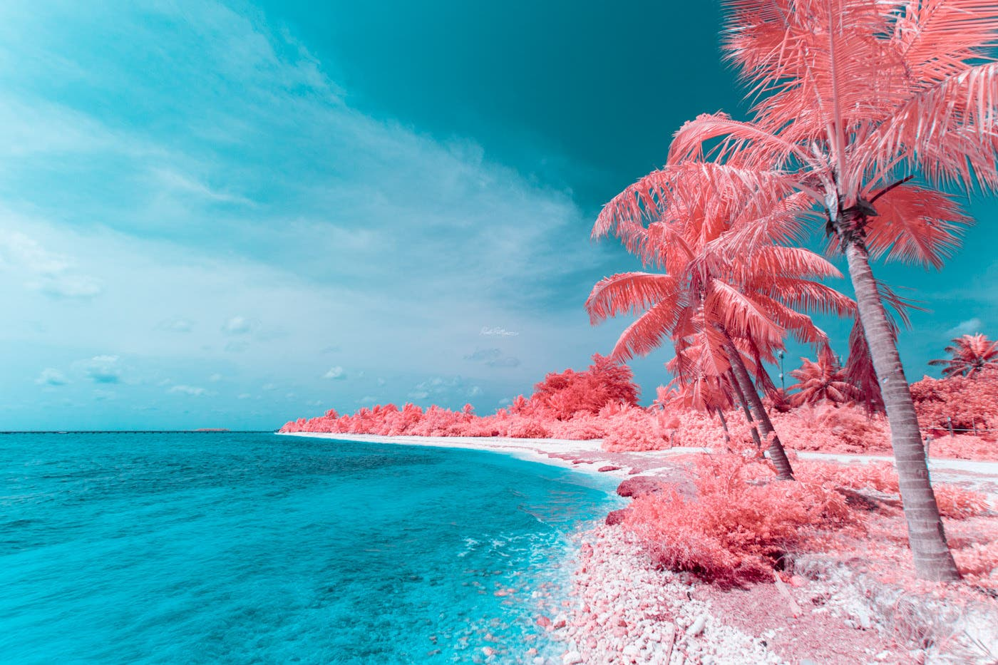 Paolo Pettigiani Reveals More of the Maldives in Surreal Infrared
