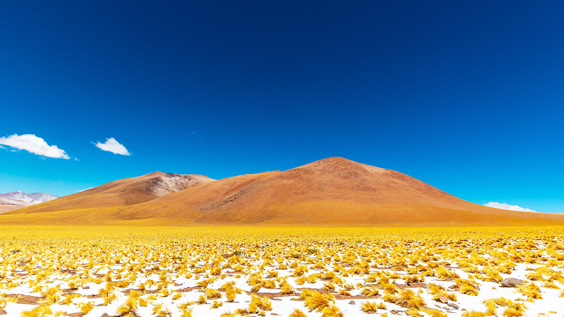Felipe Ballin Shares the Colorful Spectacle of the Atacama Landscapes