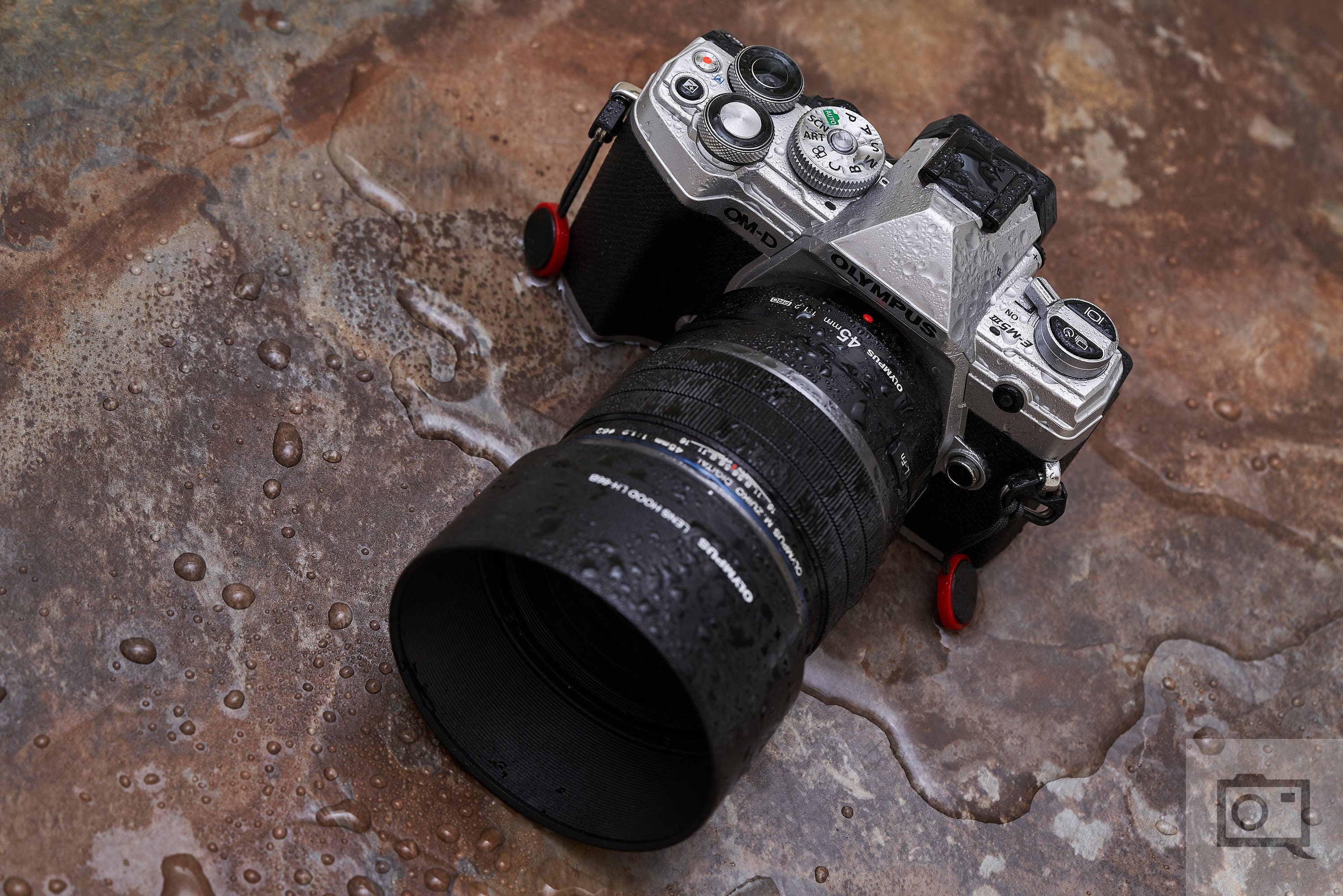 Review: Olympus OMD EM5 Mark III (A Shrunken Down EM1 Mark II)