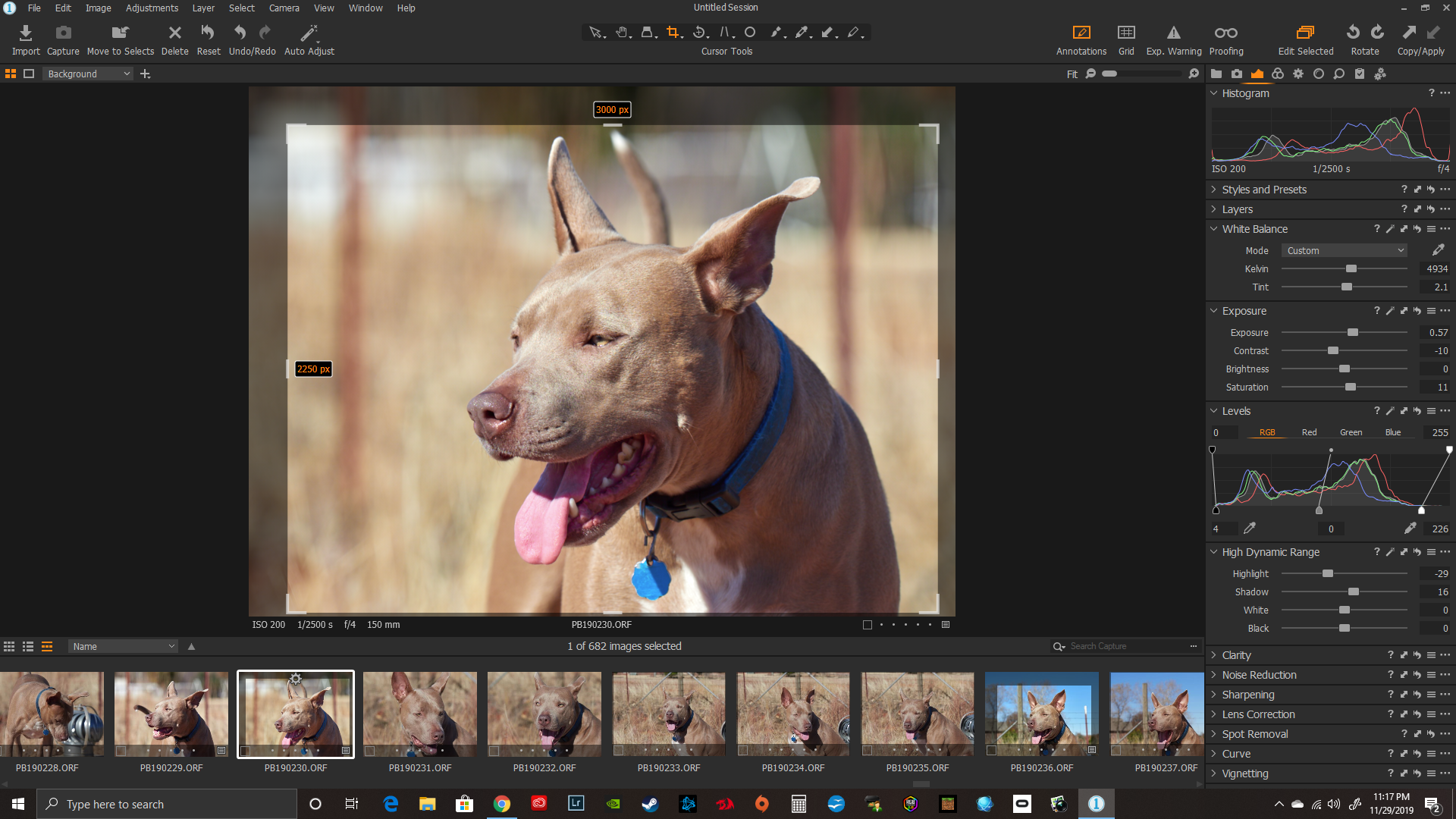We Removed the Fear of Moving from Lightroom to Capture One 20