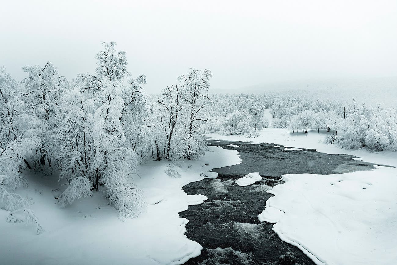 "Claire Droppert Depicts the Dramatic""Frozen Silence"" of Sweden"
