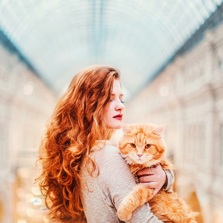 "Incredibly Adorable Portraits of a ""Catriarch"" by Kristina Makeeva"