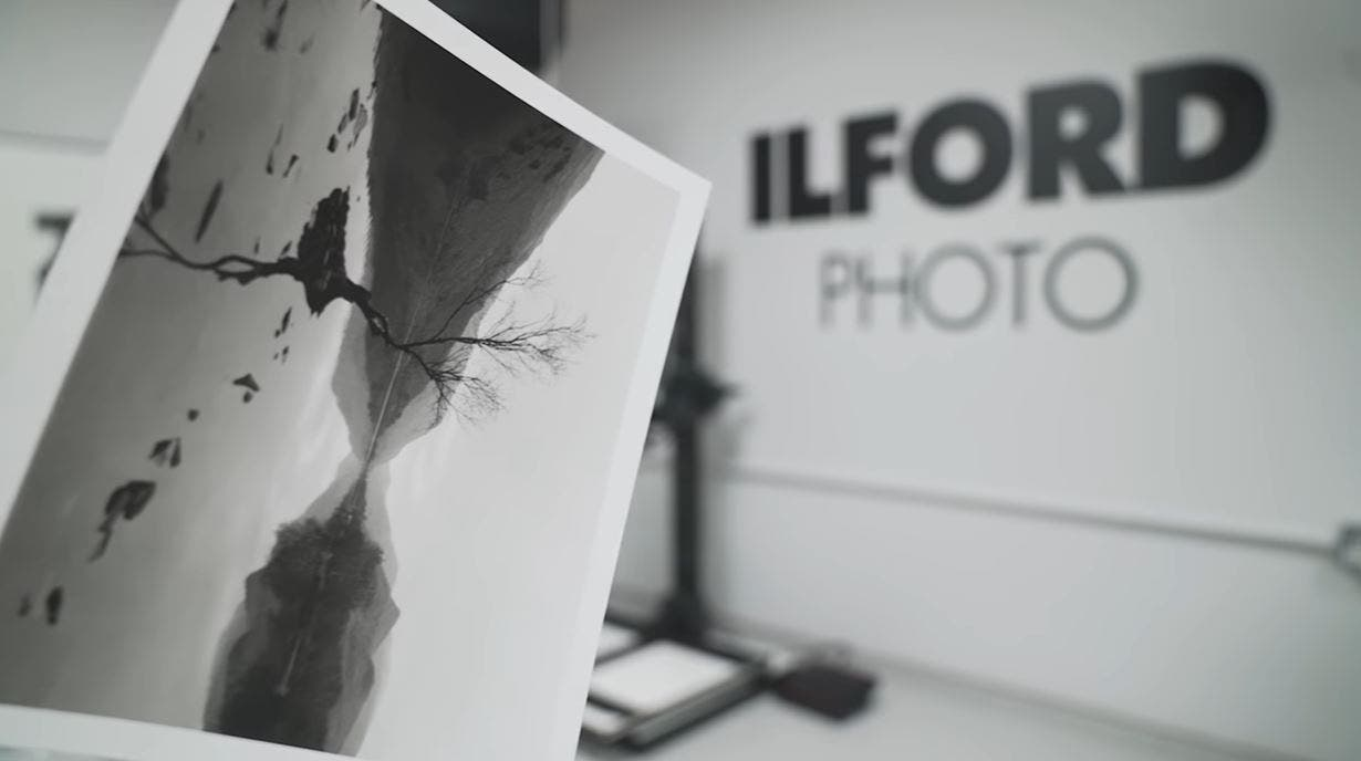 ILFORD Shows Us How to Create Black and White Darkroom Prints