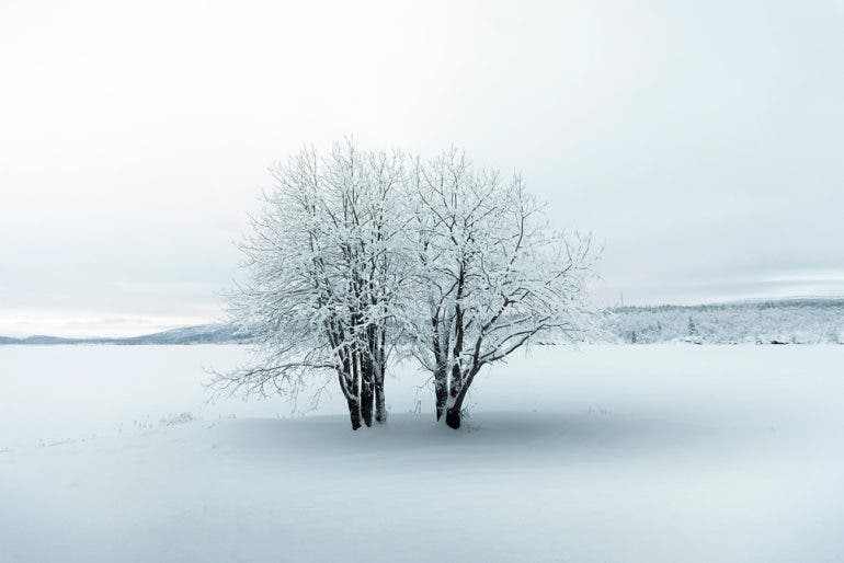 """Claire Droppert Depicts the Dramatic""""Frozen Silence"""" of Sweden"""