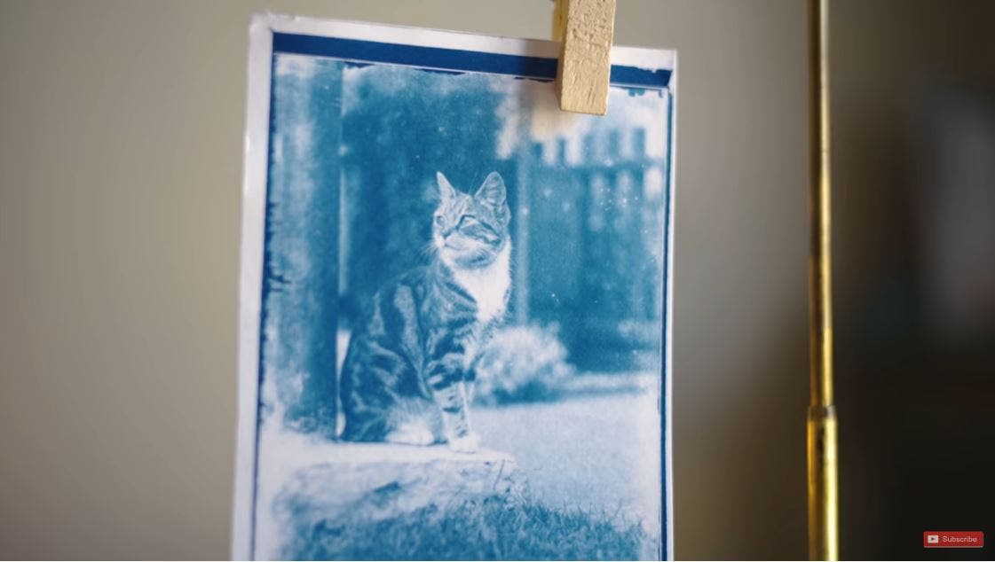 Developing Glass Plate Negatives From a 120-Year-Old Time Capsule