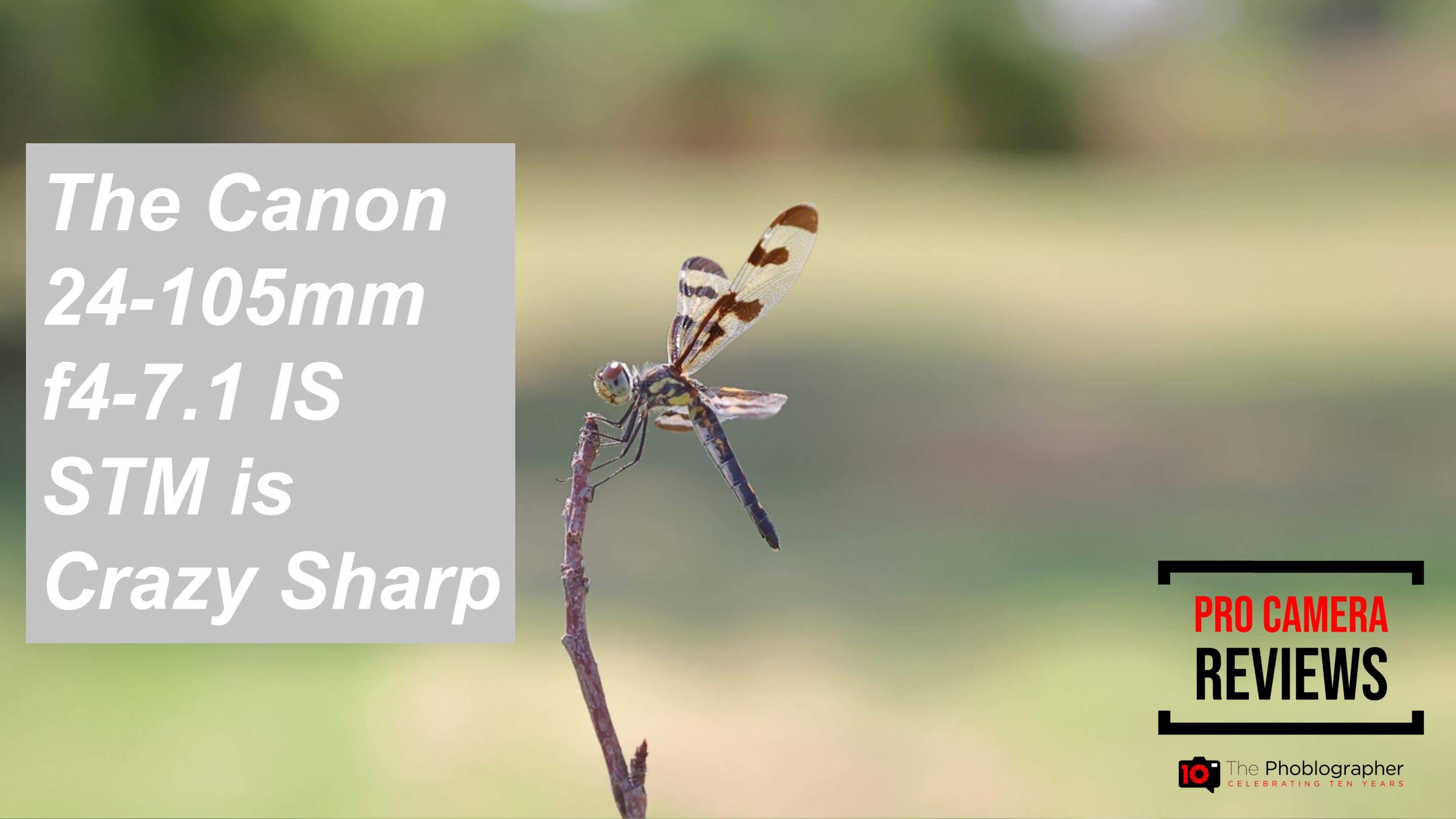 Video: The Canon 24-105mm F4-7.1 IS STM Is Crazy Sharp