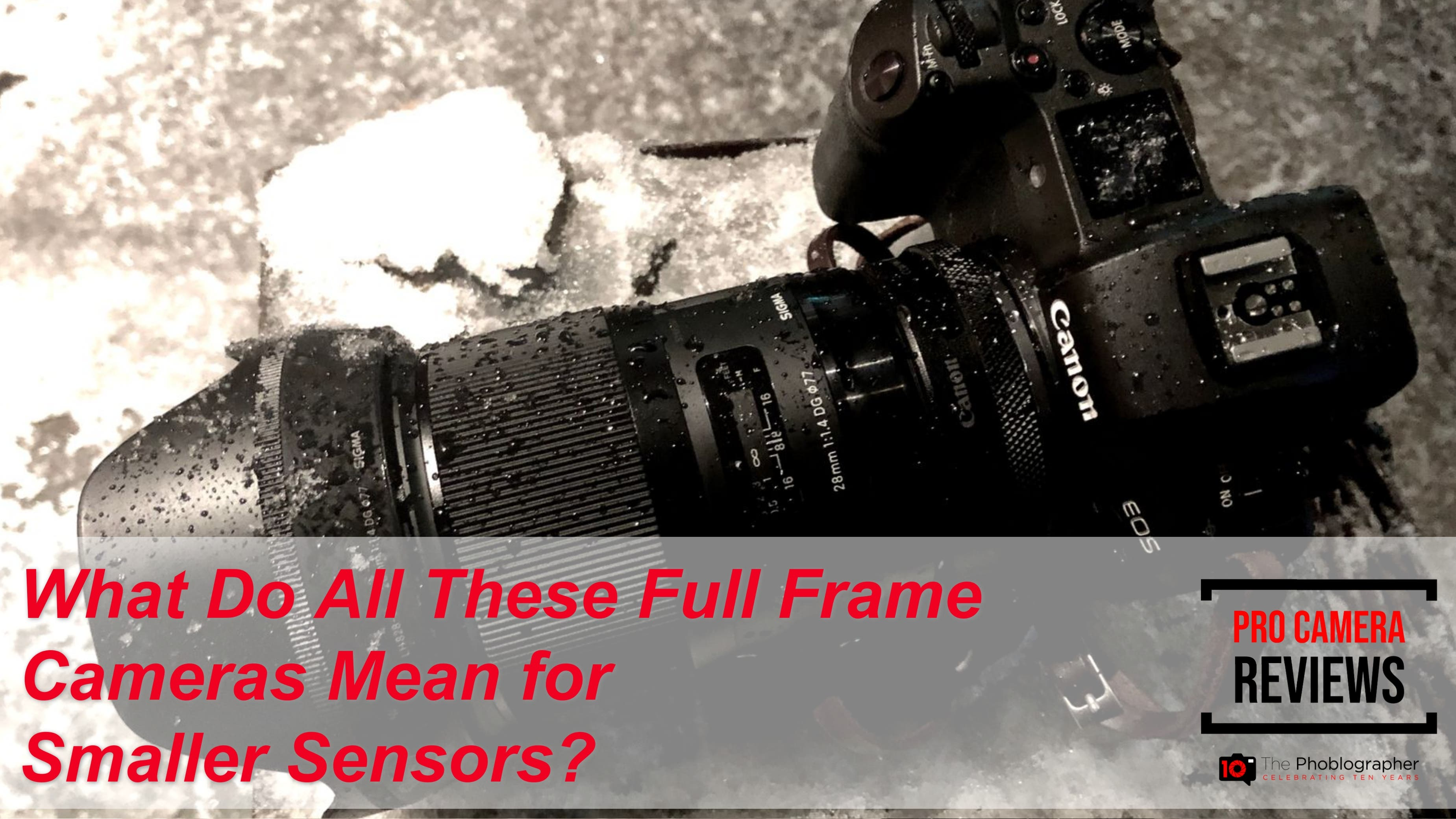 Are Sales Proving That Full Frame Is Beating Small Sensor Cameras?