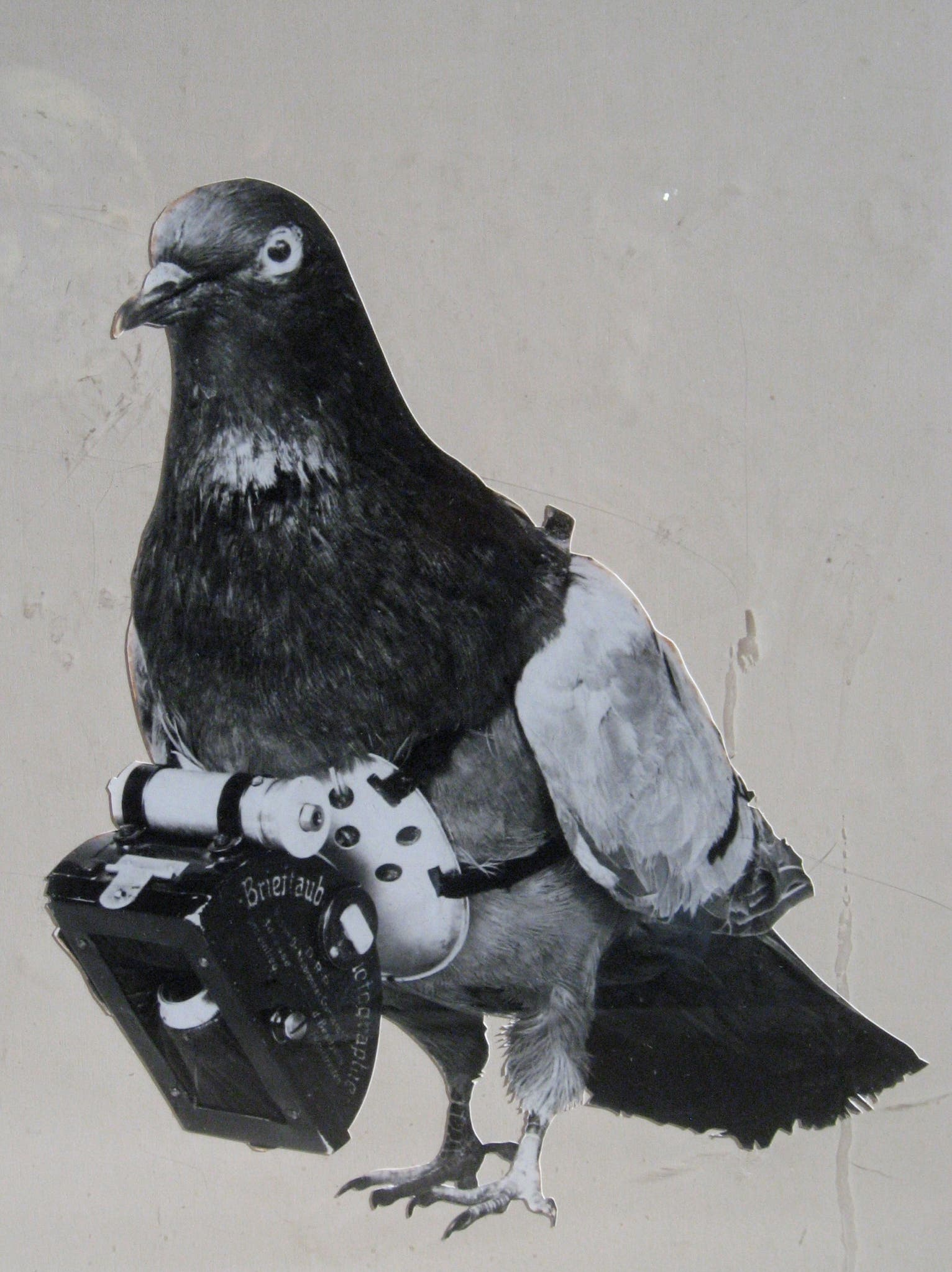 In the 1970s, The C.I.A.'s Bird Camera Program Spied on the Soviets