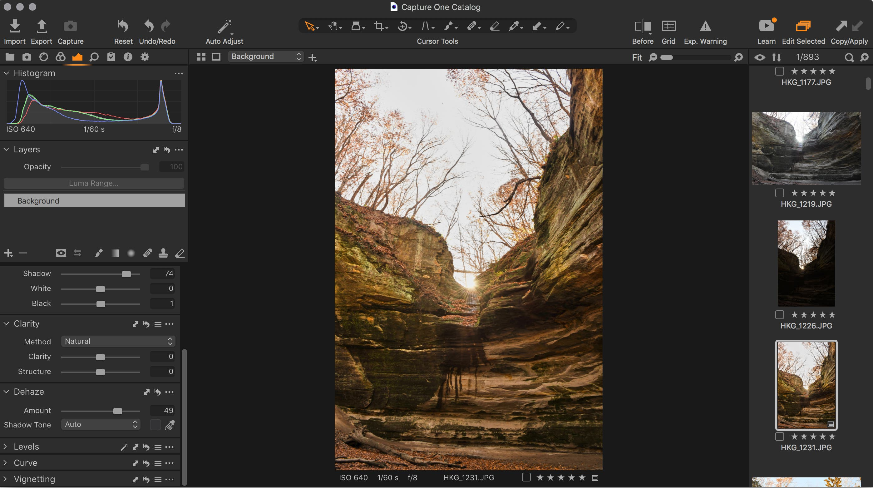 New Tools Clear the Haze in This Photo Editor: Capture One 21 Review