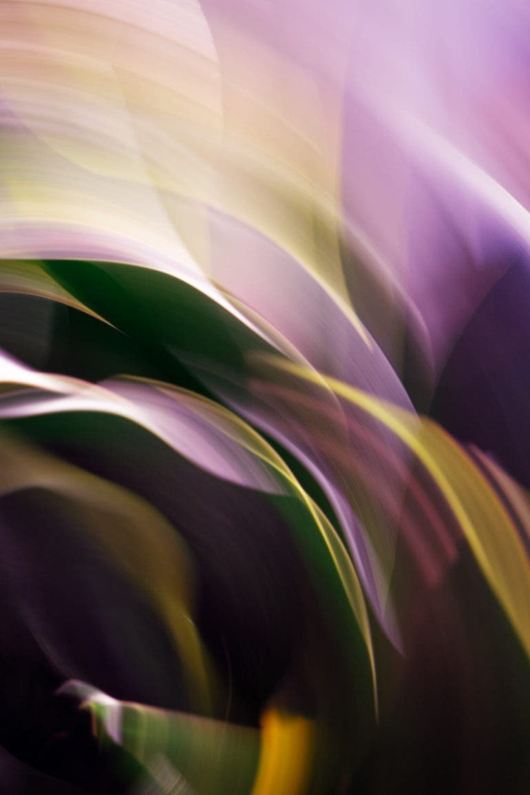 Jayna Ho Does Beautiful Abstract Photography With No Photoshop
