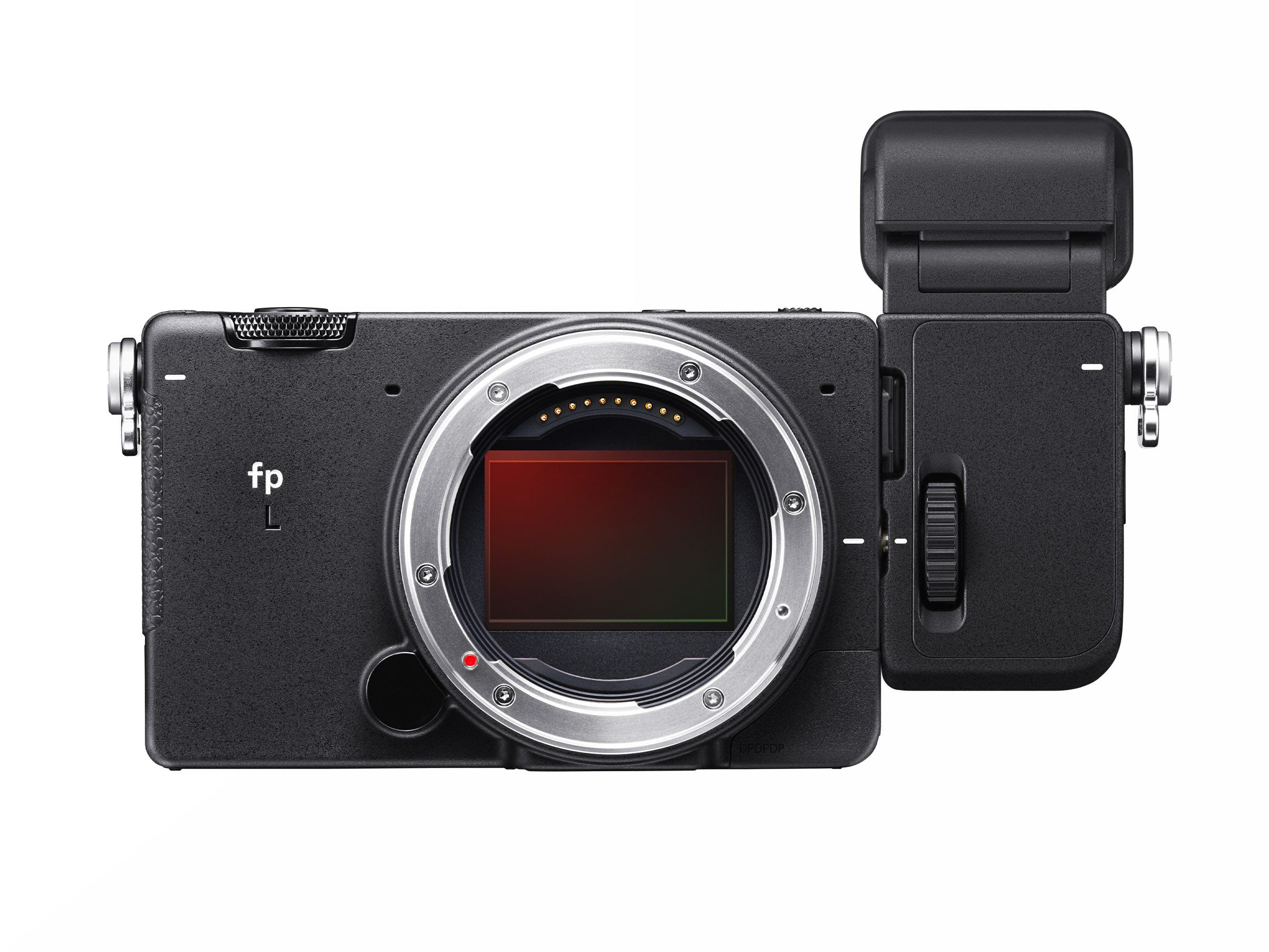 Can You Even Autofocus, Bro? The Sigma Fp L Has Big Things To Prove