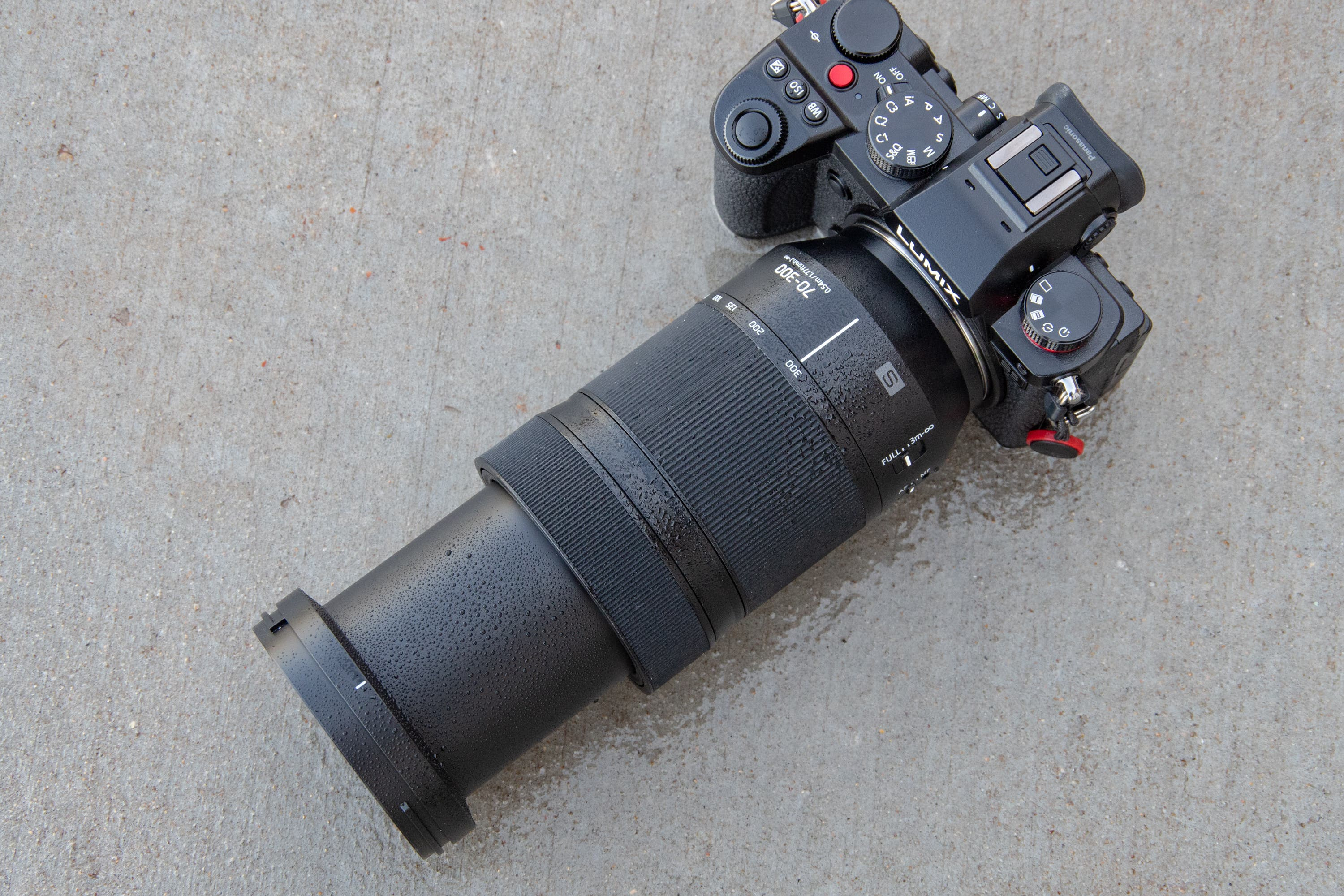 A Great Telephoto for L Mount: Panasonic 70-300mm F4.5-5.6 Review