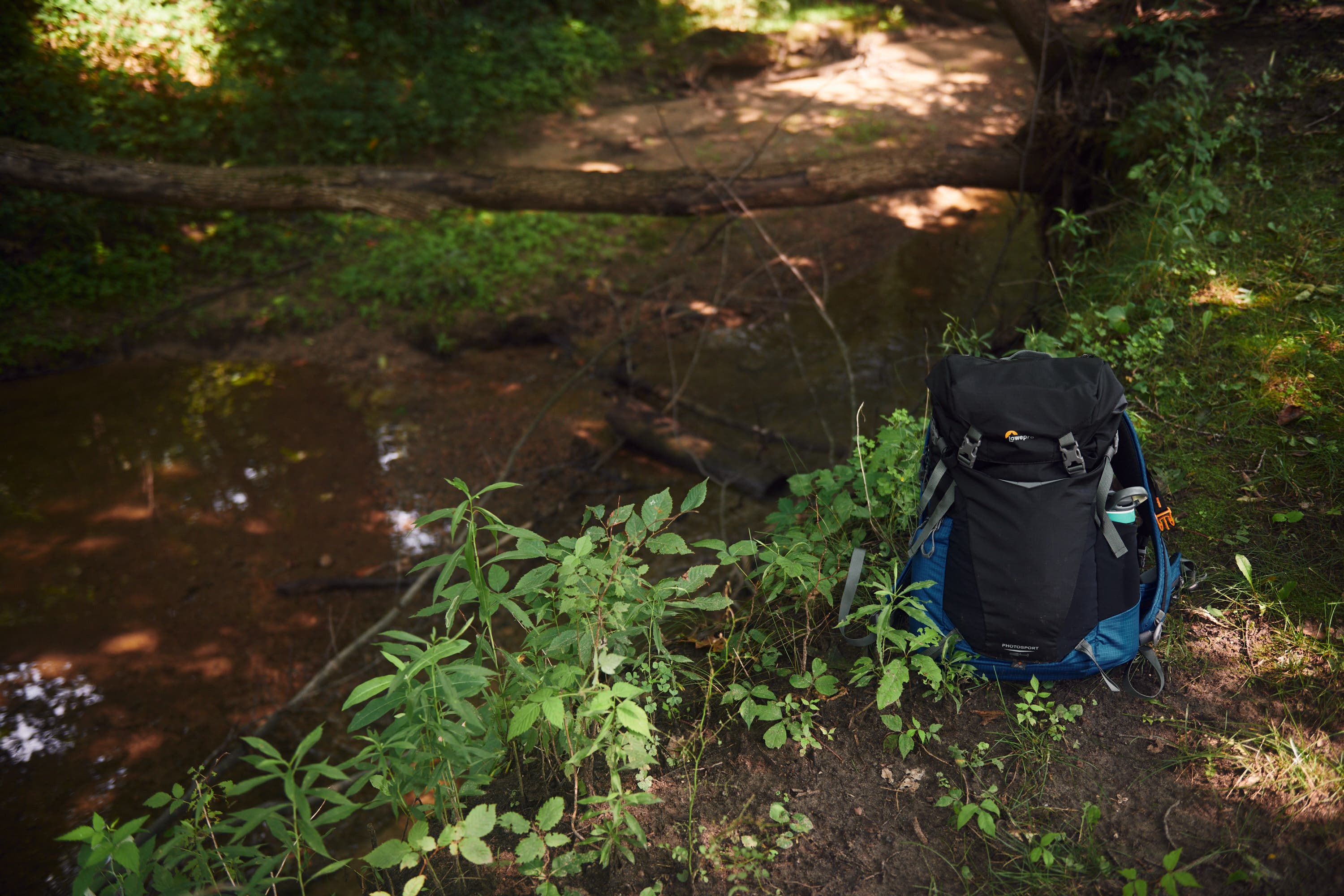 Unexpected, Practical and Green: Lowepro PhotoSport BP AW III Review