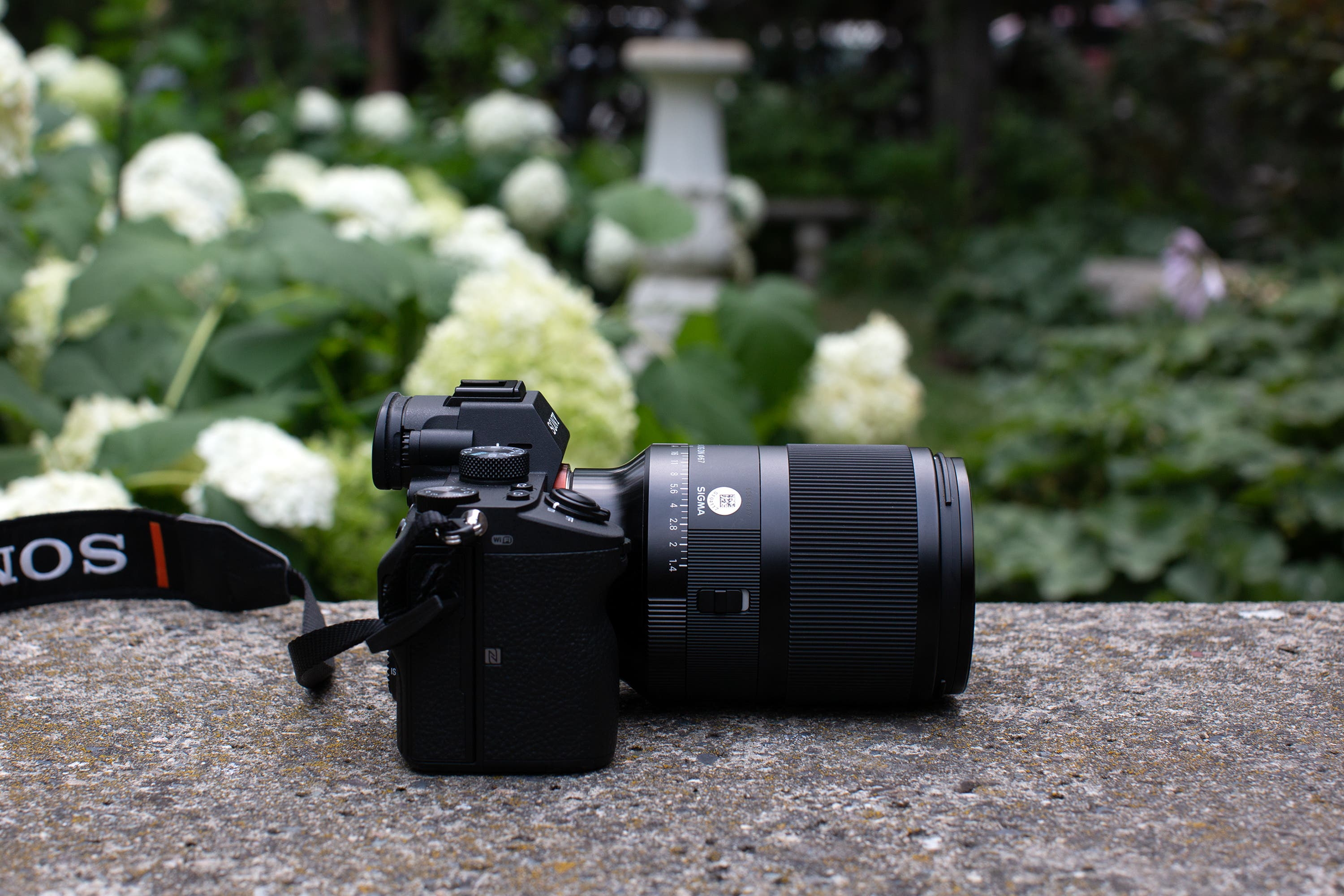 Beautiful, Sharp, And A Bit Boring. Sigma 35mm F1.4 Review