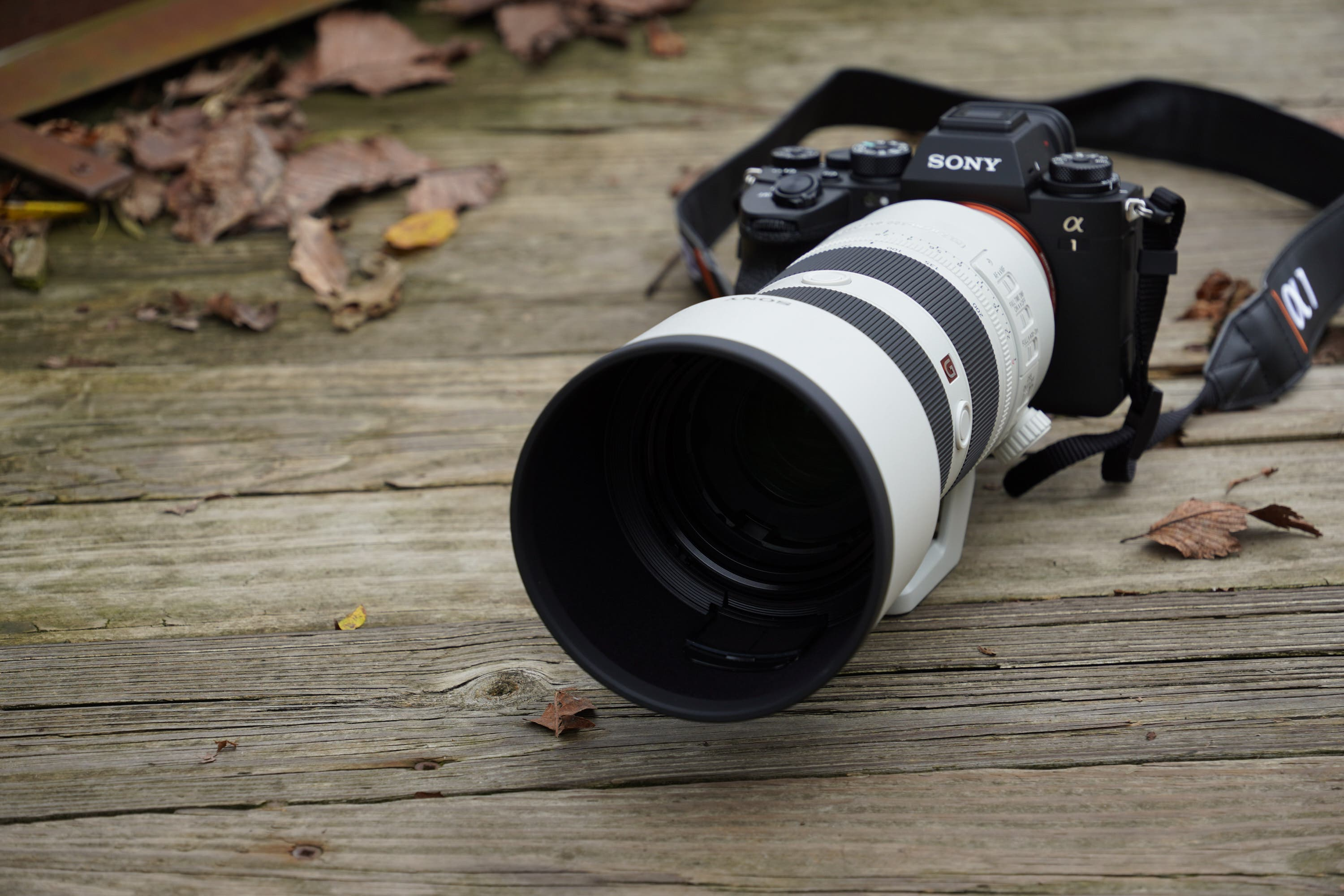 Improved and Really Fantastic: Sony 70-200mm F2.8 GM OSS II Review