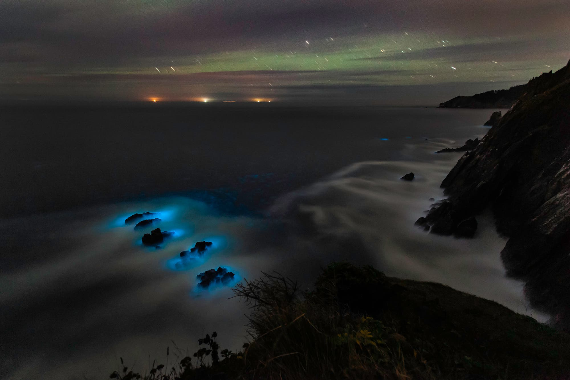 Photographer Zeb Andrews Caught a Beautiful, Rare Moment in Nature